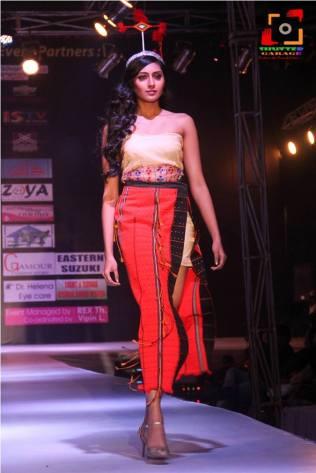 Manipur Fashion Extravaganza 2014 (19)