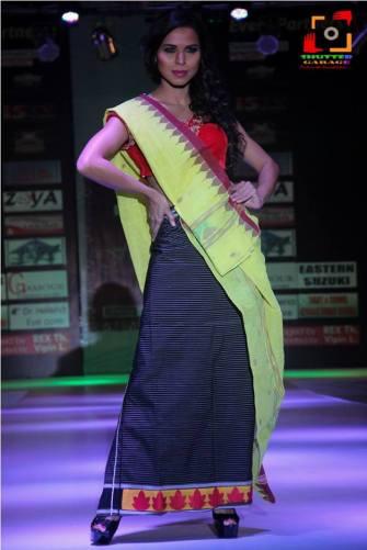 Manipur Fashion Extravaganza 2014 (20)