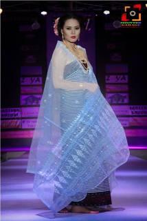 Manipur Fashion Extravaganza 2014 (22)