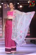 Manipur Fashion Extravaganza 2014 (41)