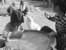 FindingTheVoices_LifeInManipur (28)