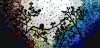wpid-2015-02-13-18.37.43.png.png