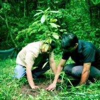 S02E36 FindingTheVoices: Moirangthem Loiya Ngamba, Wildlife & Habitat Protection Society, Punshilok, Manipur  (Part 1)