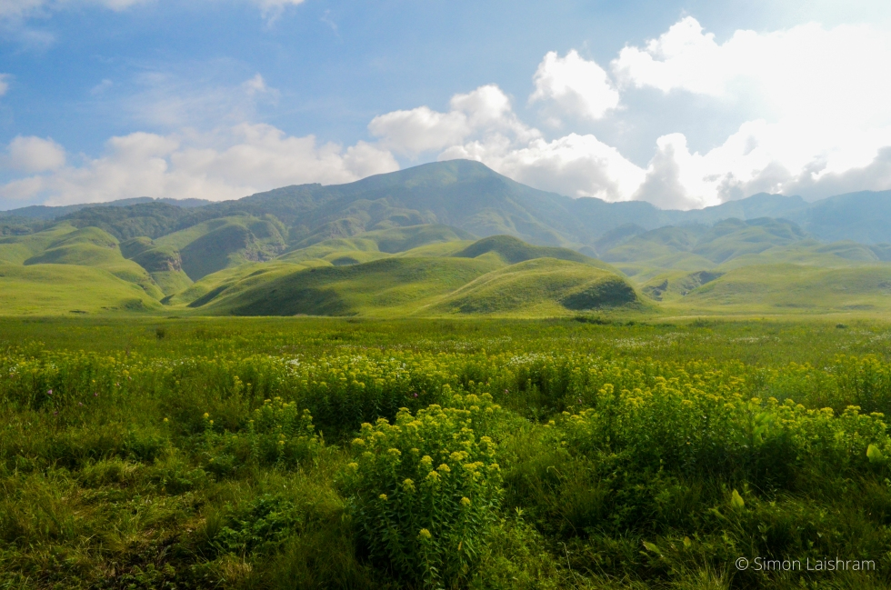 Dzukou Valley of Manipur. Photographer: Simon Laishram
