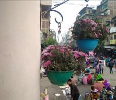 BloomingManipur_emakeithel1
